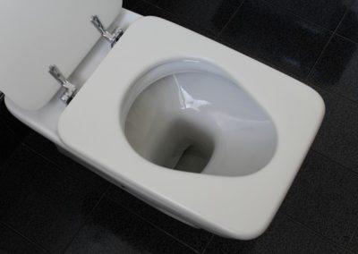 Toilet Repairs